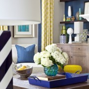 Blue and Yellow Living Room Bookcases